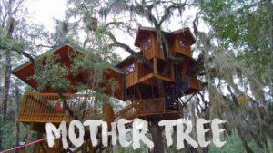 Tree House Tour - Malý dům žijící na řece Suwannee (61)