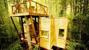 Úžasný krásný dům na stromě: Micro Cabin v Huilo Huilo | Krásný malý dům