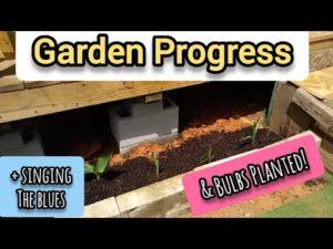 Pokrok v zahradě a izolaci v malém domě - malém životě Ann