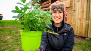 Zahájení naší bylinkové zahrady / Drobného domu v Polsku